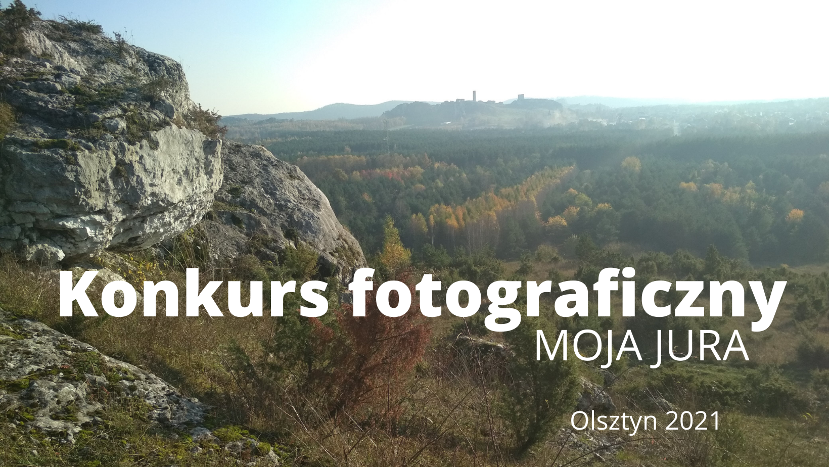 widok zamku w olsztynie