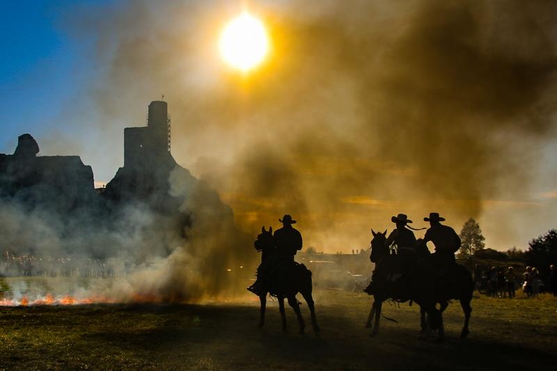 konie na tle zamku